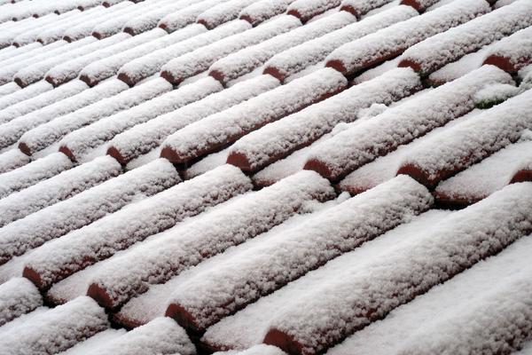Verschneite Dachpfannen